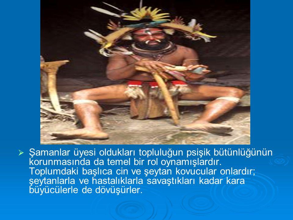  Şamanlar üyesi oldukları topluluğun psişik bütünlüğünün korunmasında da temel bir rol oynamışlardır. Toplumdaki başlıca cin ve şeytan kovucular on
