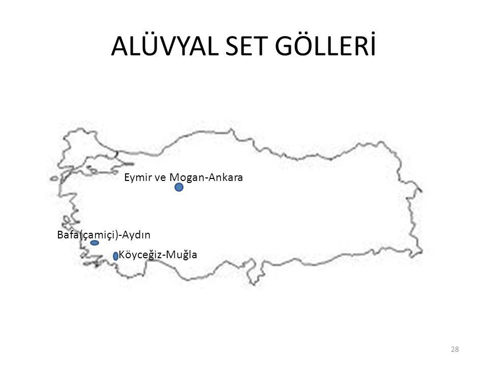 ALÜVYAL SET GÖLLERİ 28 Eymir ve Mogan-Ankara Köyceğiz-Muğla Bafa(çamiçi)-Aydın