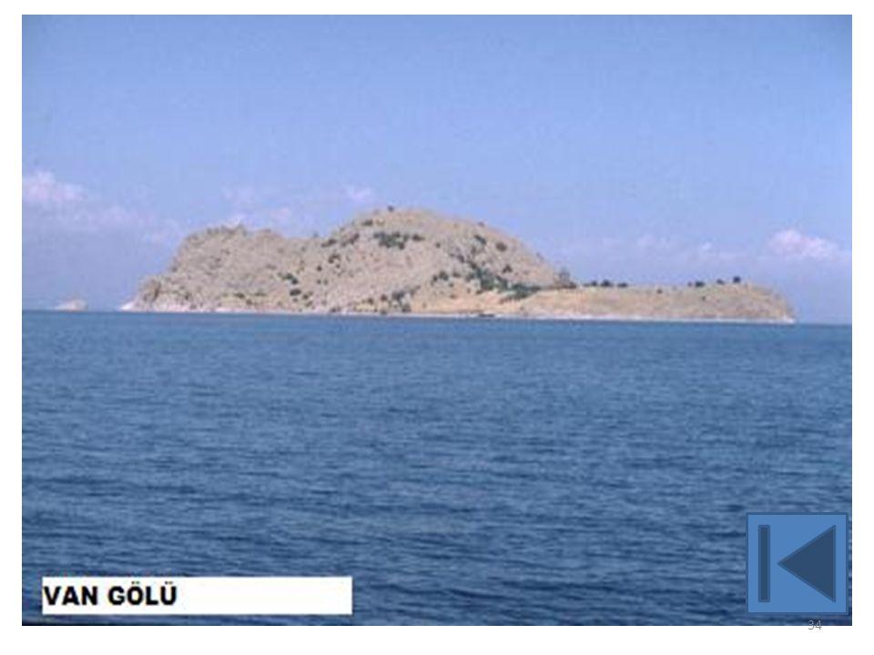 VOLKANİK, VOLKANİK SET, TEKTONİK- VOLKANİK SET (KARMA) GÖLLERİMİZ 35 Erçek-Van:Lav Seti Çıldır-Kars: Tektonik -Lav Seti Nazik-Bitlis:Lav Seti Nemrut-Bitlis: Kaldera gölü Meke Tuzlası-Konya-Karapınar: Maar gölü Van:tektonik-volkanik set