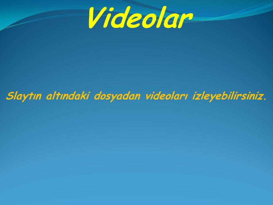 Videolar Slaytın altındaki dosyadan videoları izleyebilirsiniz.