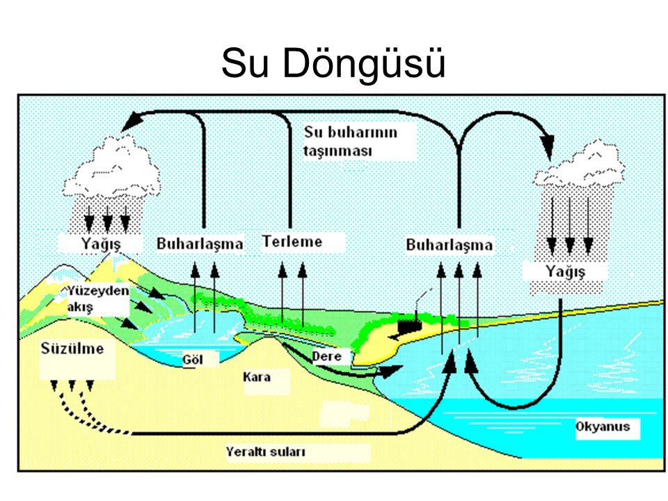En fazla dönüşüm nehirlerden okyanuslara doğrudur.( Aşınma ve yağmurlar ile) Bu nedenle sudaki P balık ve algler tarafından alınır.