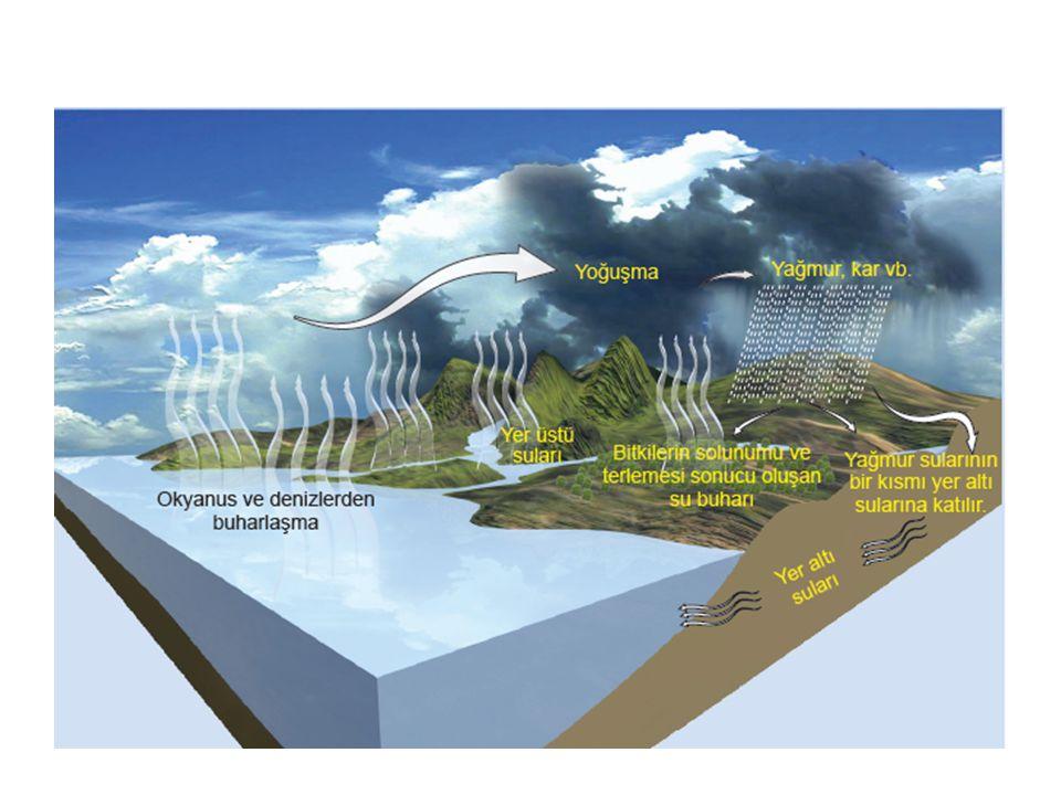 İnsanoğlunun azot döngüsüne etkisi nedir.Fosil yakıt yanması .
