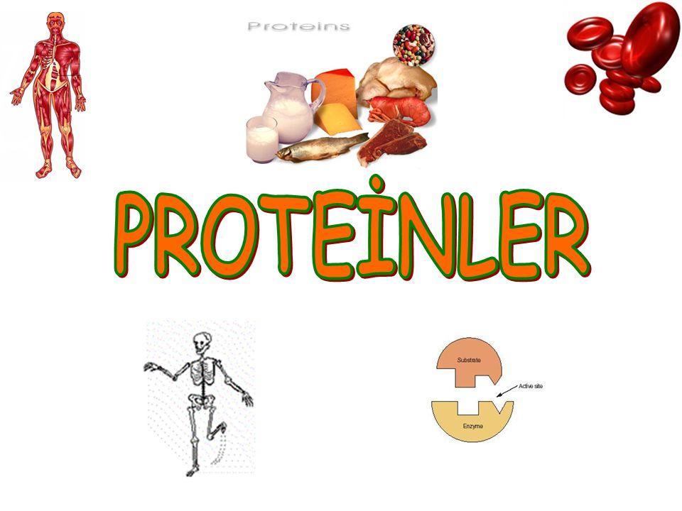 Proteinlere ait, I.Genlerdeki bilgilere göre sentezlenme II.Monomerleri arasında peptit bağları bulundurma III.Enerji kaynağı olarak kullanılma IV.Yapıcı ve onarıcı olarak kullanılma V.Kimyasal sindirimle monomerlerine ayrılma Hangileri proteinleri, yağ ve karbonhidratlardan ayıran özelliklerdir ?