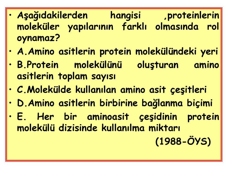 Aşağıdakilerden hangisi,proteinlerin moleküler yapılarının farklı olmasında rol oynamaz.