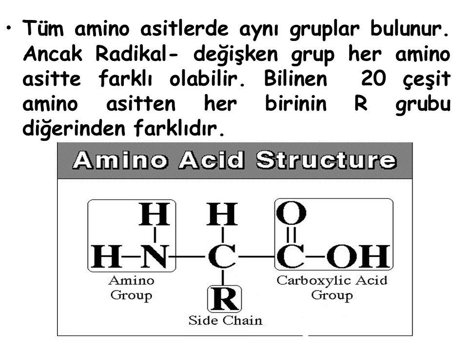 Isıtma, yüksek basınç ve asit gibi etkenler proteinlerin yapısını bozar.