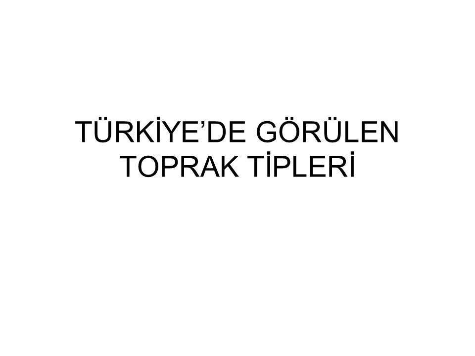Türkiye'de Görülen Topraklar A)Zonal Topraklar 1-Kahverengi orman toprakları 2-Terra Rossa toprakları 3-Kahverengi ve kestanerenkli bozkır toprakları 4-Çernozyom toprakları