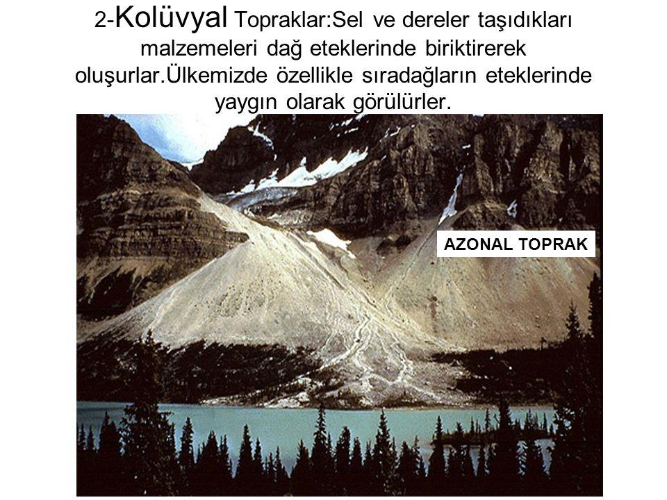 2- Kolüvyal Topraklar:Sel ve dereler taşıdıkları malzemeleri dağ eteklerinde biriktirerek oluşurlar.Ülkemizde özellikle sıradağların eteklerinde yaygı