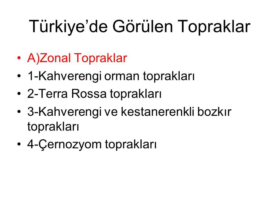 Türkiye'de Görülen Topraklar A)Zonal Topraklar 1-Kahverengi orman toprakları 2-Terra Rossa toprakları 3-Kahverengi ve kestanerenkli bozkır toprakları