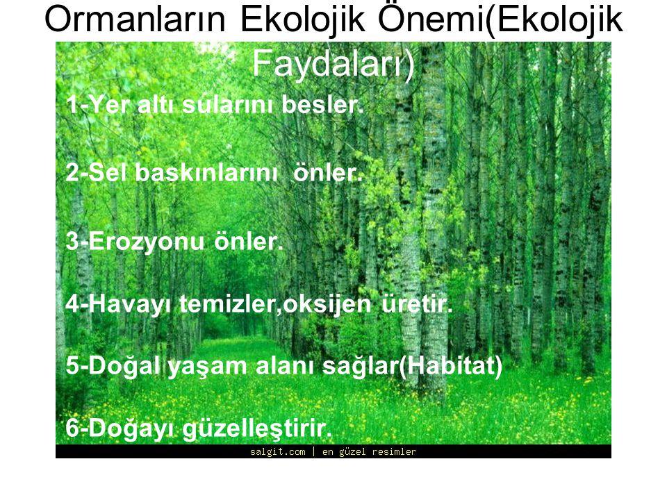 Ormanların Ekolojik Önemi(Ekolojik Faydaları) 1-Yer altı sularını besler. 2-Sel baskınlarını önler. 3-Erozyonu önler. 4-Havayı temizler,oksijen üretir