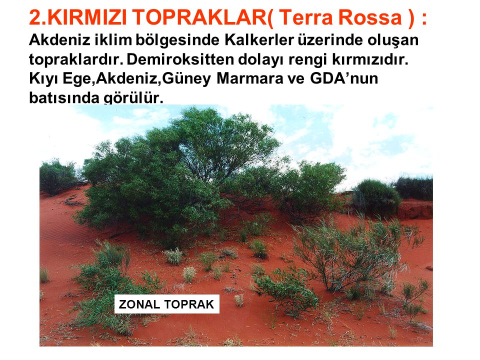2.KIRMIZI TOPRAKLAR( Terra Rossa ) : Akdeniz iklim bölgesinde Kalkerler üzerinde oluşan topraklardır. Demiroksitten dolayı rengi kırmızıdır. Kıyı Ege,
