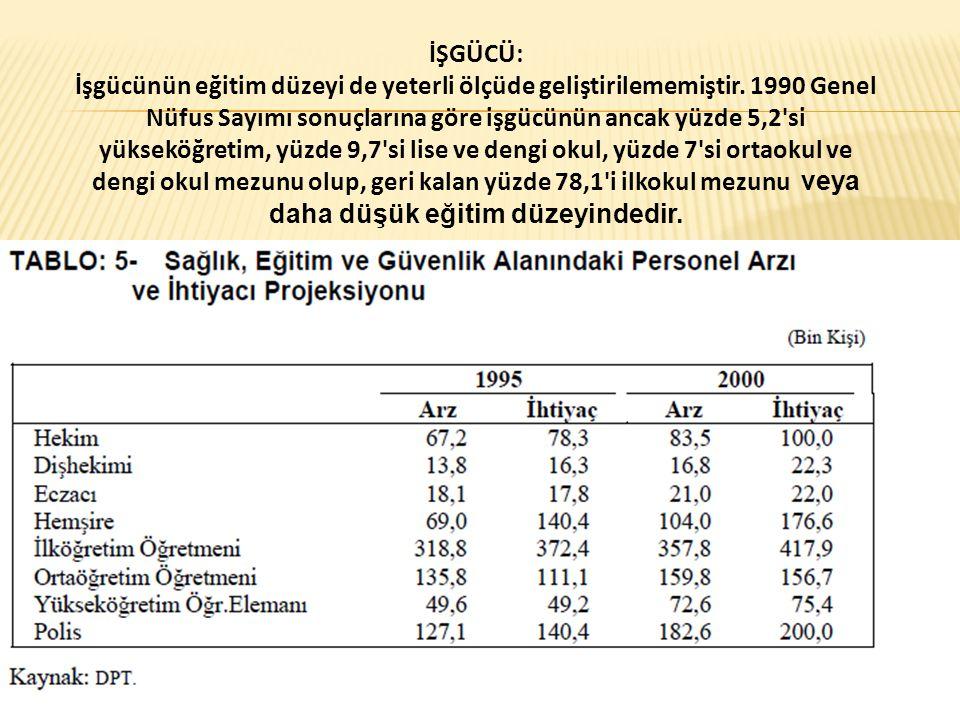 İŞGÜCÜ: İşgücünün eğitim düzeyi de yeterli ölçüde geliştirilememiştir. 1990 Genel Nüfus Sayımı sonuçlarına göre işgücünün ancak yüzde 5,2'si yükseköğr