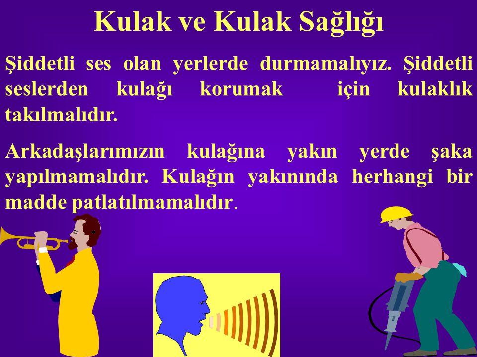 Kulak ve Kulak Sağlığı Şiddetli ses olan yerlerde durmamalıyız. Şiddetli seslerden kulağı korumak için kulaklık takılmalıdır. Arkadaşlarımızın kulağın