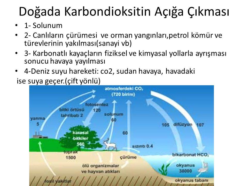 Doğada Karbondioksitin Açığa Çıkması 1- Solunum 2- Canlıların çürümesi ve orman yangınları,petrol kömür ve türevlerinin yakılması(sanayi vb) 3- Karbonatlı kayaçların fiziksel ve kimyasal yollarla ayrışması sonucu havaya yayılması 4-Deniz suyu hareketi: co2, sudan havaya, havadaki ise suya geçer.(çift yönlü)