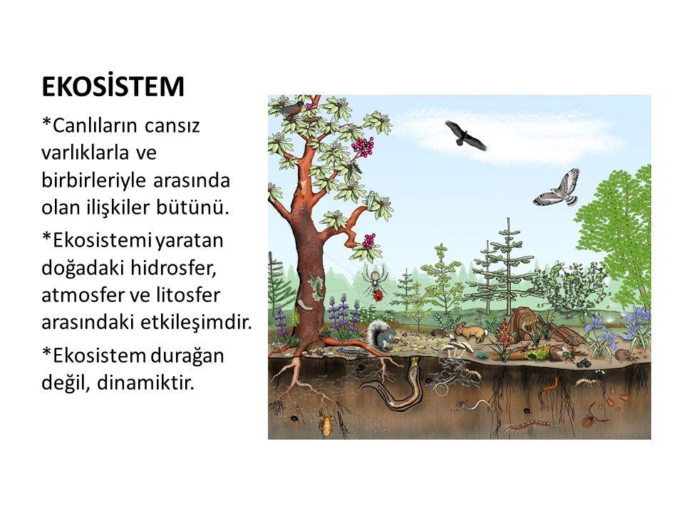 EKOSİSTEM *Canlıların cansız varlıklarla ve birbirleriyle arasında olan ilişkiler bütünü. *Ekosistemi yaratan doğadaki hidrosfer, atmosfer ve litosfer