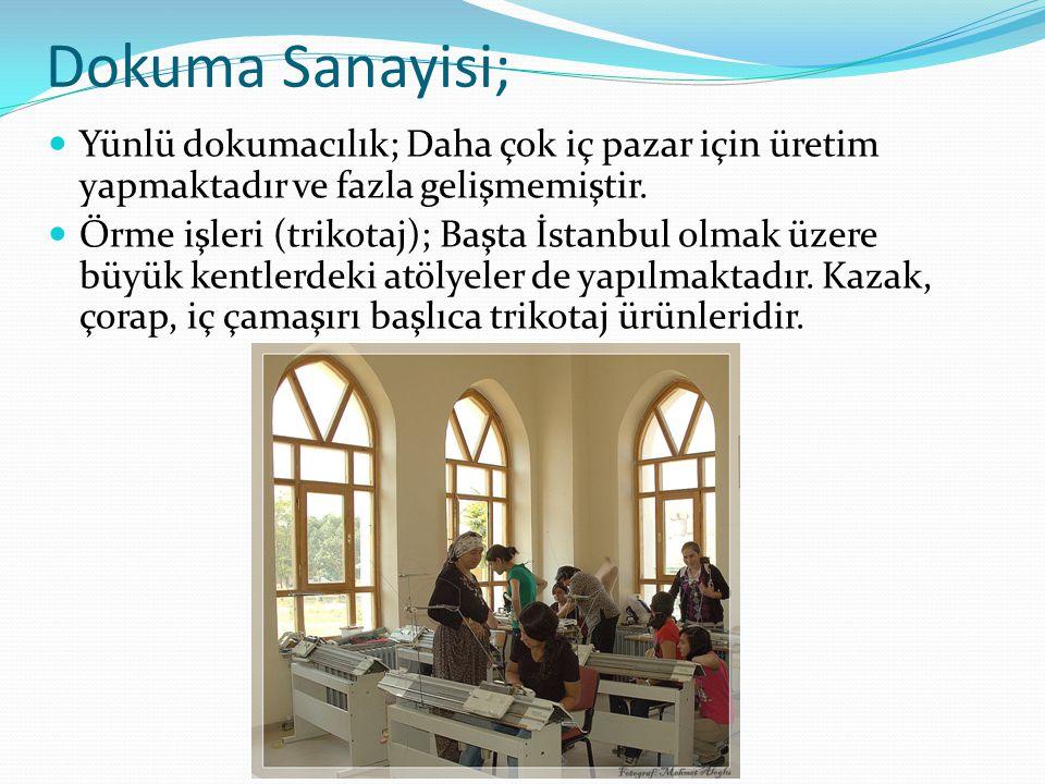 Dokuma Sanayisi; Yünlü dokumacılık; Daha çok iç pazar için üretim yapmaktadır ve fazla gelişmemiştir. Örme işleri (trikotaj); Başta İstanbul olmak üze
