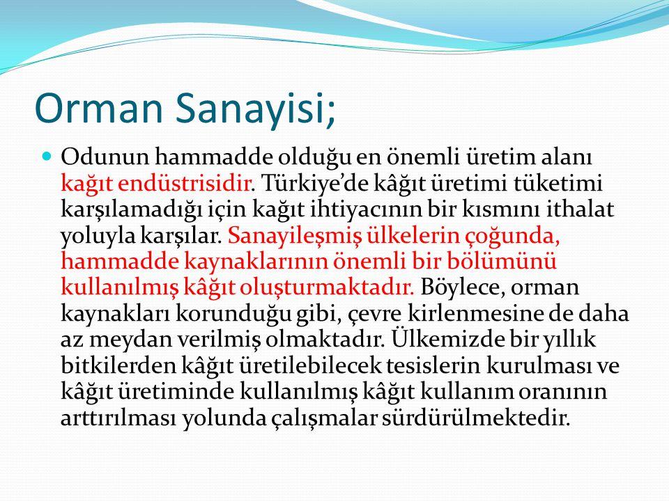 Orman Sanayisi; Odunun hammadde olduğu en önemli üretim alanı kağıt endüstrisidir. Türkiye'de kâğıt üretimi tüketimi karşılamadığı için kağıt ihtiyacı