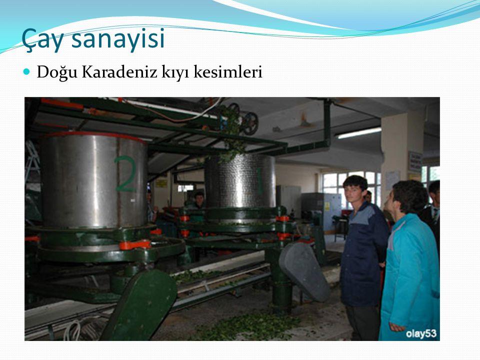 Çay sanayisi Doğu Karadeniz kıyı kesimleri