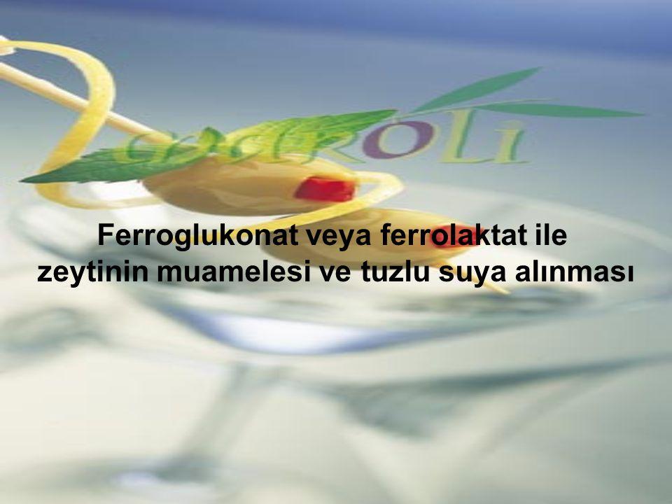 Ferroglukonat veya ferrolaktat ile zeytinin muamelesi ve tuzlu suya alınması