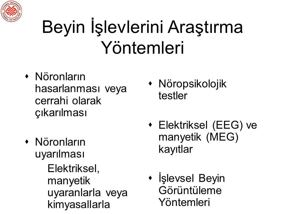 Geçici Lezyonlar Transkranyal Manyetik Stimülasyon (TMS)