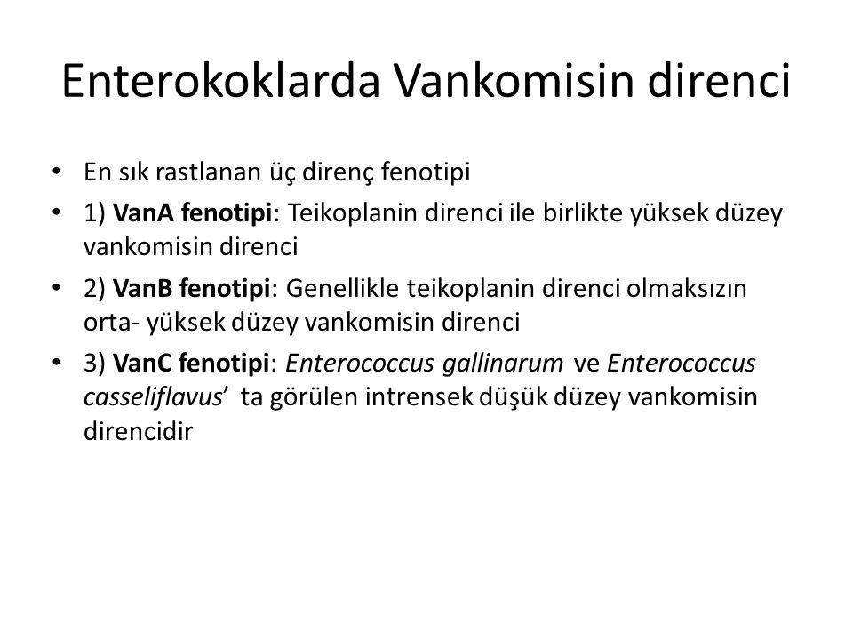 Enterokoklarda Vankomisin direnci En sık rastlanan üç direnç fenotipi 1) VanA fenotipi: Teikoplanin direnci ile birlikte yüksek düzey vankomisin diren