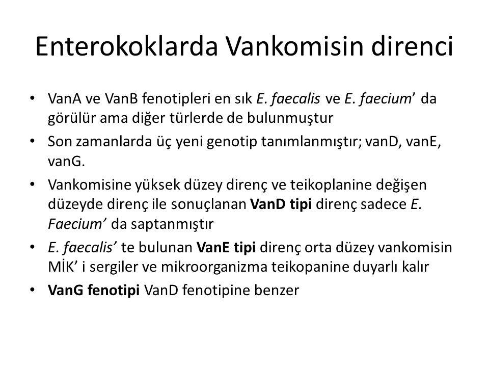 Enterokoklarda Vankomisin direnci VanA ve VanB fenotipleri en sık E. faecalis ve E. faecium' da görülür ama diğer türlerde de bulunmuştur Son zamanlar