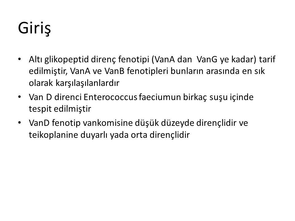 Giriş Altı glikopeptid direnç fenotipi (VanA dan VanG ye kadar) tarif edilmiştir, VanA ve VanB fenotipleri bunların arasında en sık olarak karşılaşıla