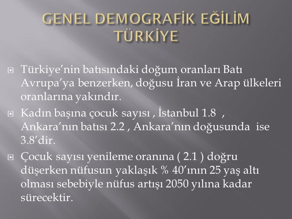  Türkiye'nin batısındaki doğum oranları Batı Avrupa'ya benzerken, doğusu İran ve Arap ülkeleri oranlarına yakındır.  Kadın başına çocuk sayısı, İsta
