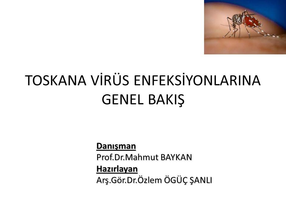 GİRİŞ Toskana virus(TOSV) ilk olarak 1971 yılında İtalya'dan toplanan Phlebotomus perniciosus türü tatarcıklardan izole edilmiş İnsanlarda santral sinir sistemi(SSS) enfeksiyonuyla ilişkisi ise 1983 yılında yine İtalya'da lenfositik menenjitli bir hastanın BOS' nda saptanmasıyla gösterilmiştir