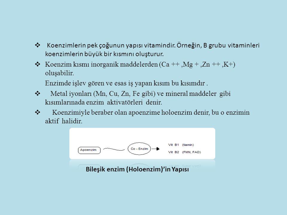  Koenzimlerin pek çoğunun yapısı vitamindir. Örneğin, B grubu vitaminleri koenzimlerin büyük bir kısmını oluşturur.  Koenzim kısmı inorganik maddele