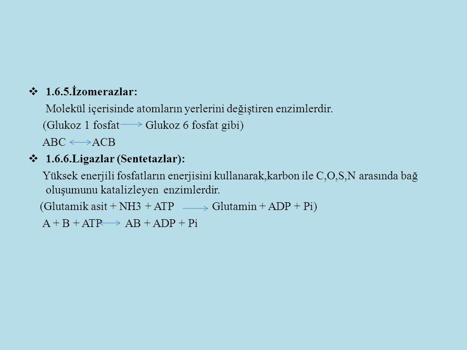  1.6.5.İzomerazlar: Molekül içerisinde atomların yerlerini değiştiren enzimlerdir. (Glukoz 1 fosfat Glukoz 6 fosfat gibi) ABC ACB  1.6.6.Ligazlar (S