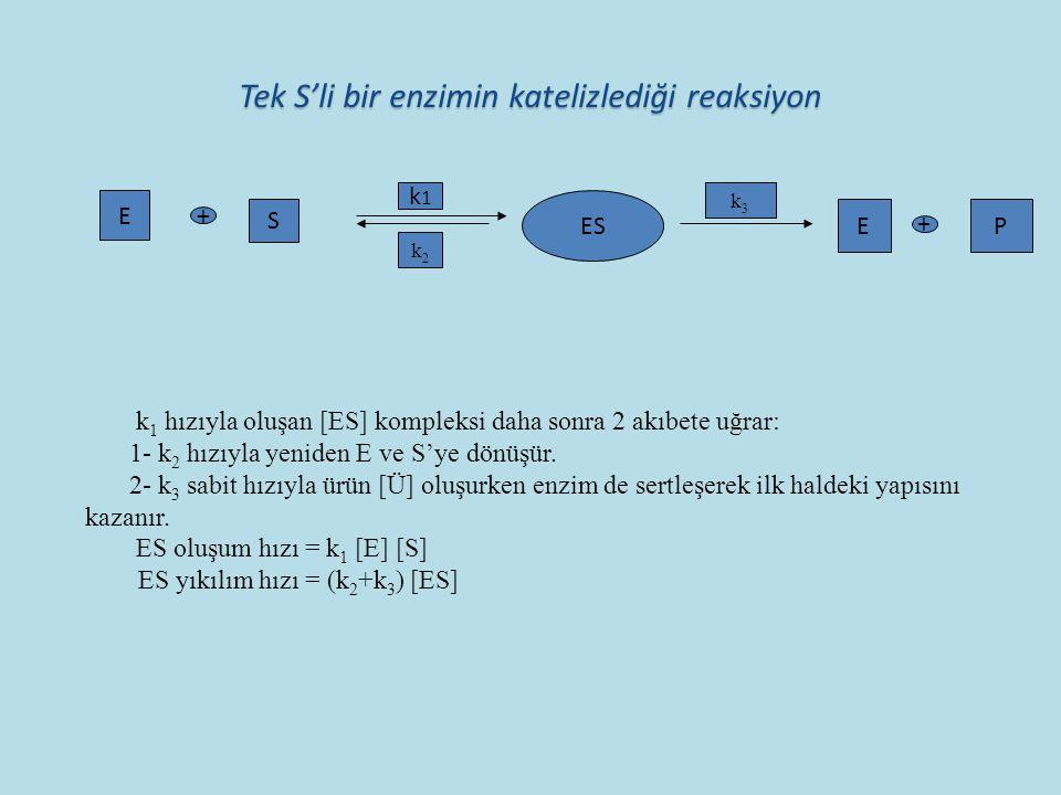Tek S'li bir enzimin katelizlediği reaksiyon Tek S'li bir enzimin katelizlediği reaksiyon E + S k1k1 ES k2k2 k3k3 EP k 1 hızıyla oluşan [ES] kompleksi