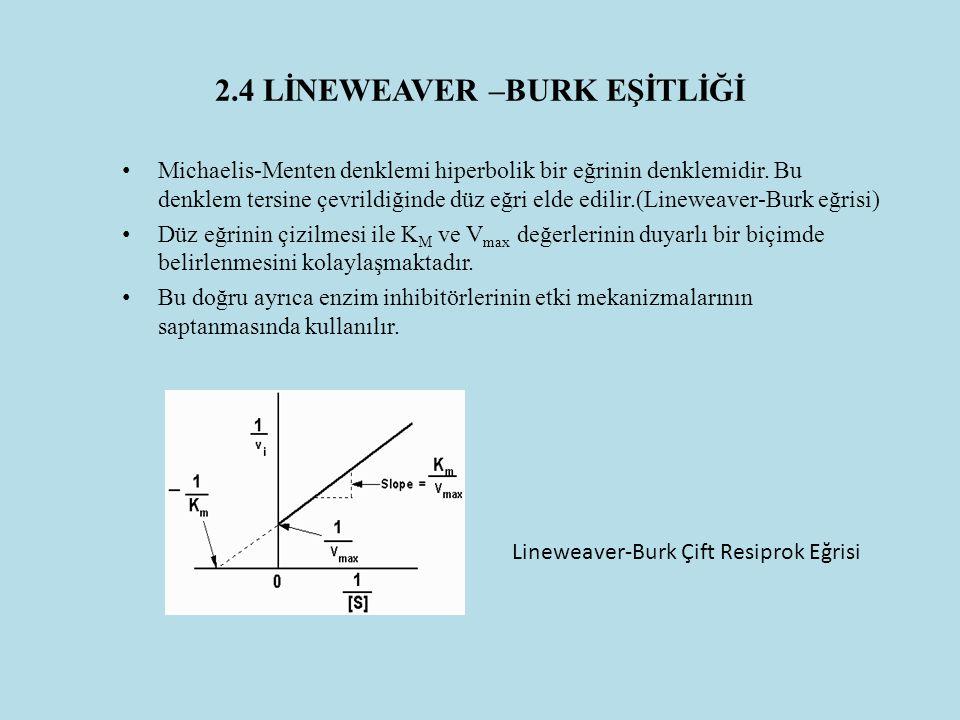 2.4 LİNEWEAVER –BURK EŞİTLİĞİ Michaelis-Menten denklemi hiperbolik bir eğrinin denklemidir. Bu denklem tersine çevrildiğinde düz eğri elde edilir.(Lin
