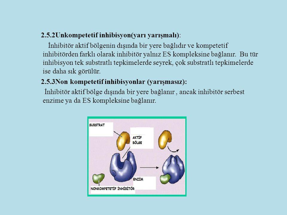 2.5.2Unkompetetif inhibisyon(yarı yarışmalı): İnhibitör aktif bölgenin dışında bir yere bağlıdır ve kompetetif inhibitörden farklı olarak inhibitör yalnız ES kompleksine bağlanır.