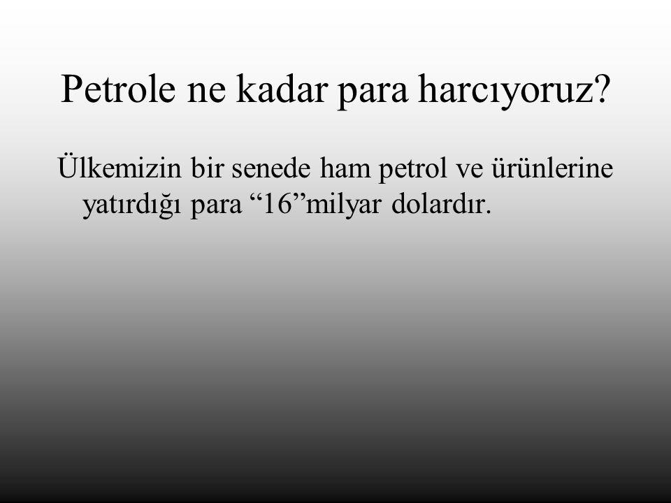 Petrole ne kadar para harcıyoruz.