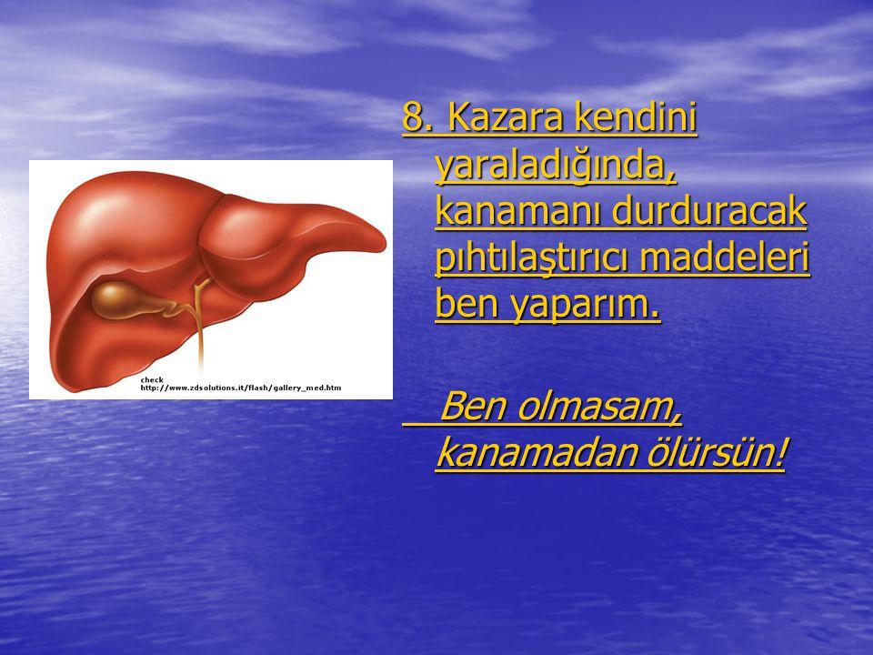 8. Kazara kendini yaraladığında, kanamanı durduracak pıhtılaştırıcı maddeleri ben yaparım. 8. Kazara kendini yaraladığında, kanamanı durduracak pıhtıl