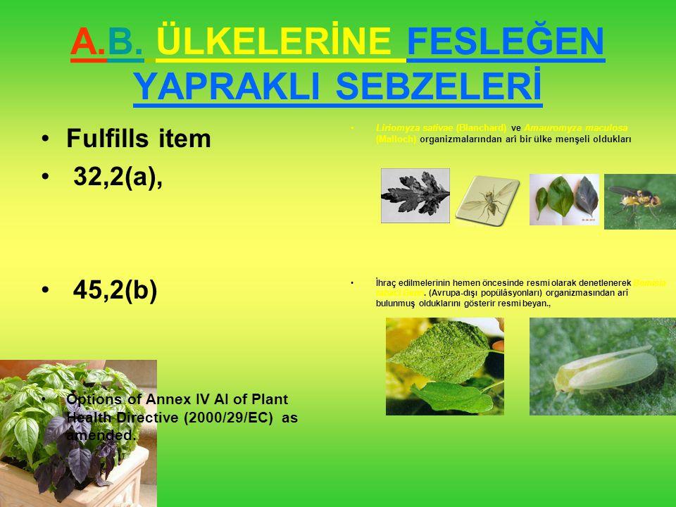 A.B. ÜLKELERİNE FESLEĞEN YAPRAKLI SEBZELERİ Liriomyza sativae (Blanchard) ve Amauromyza maculosa (Malloch) organizmalarından arî bir ülke menşeli oldu