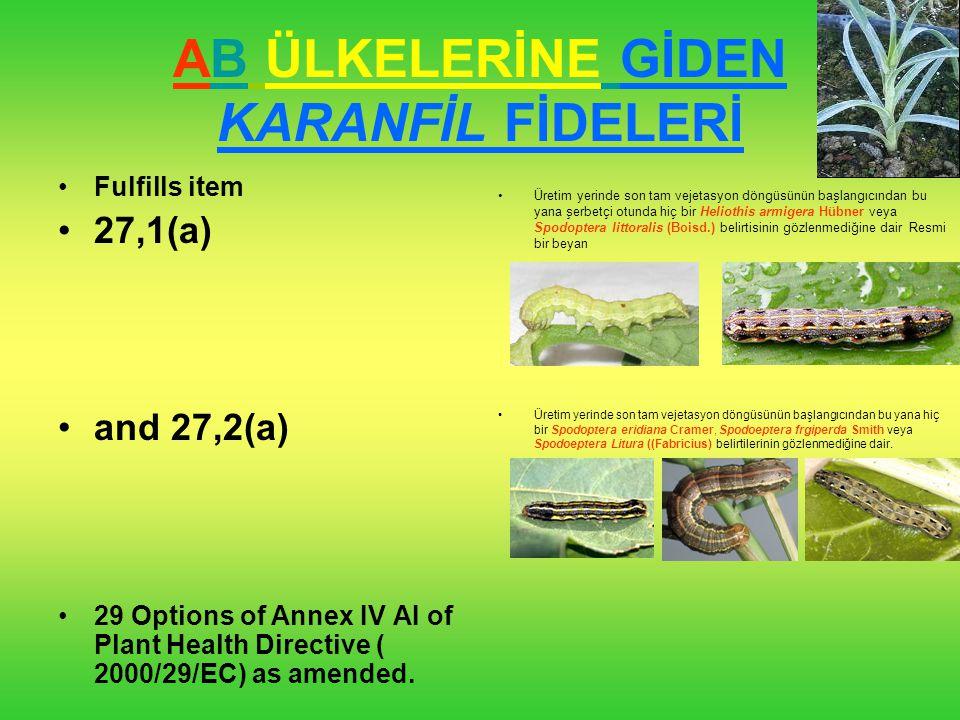 Dendranthema(Kasımpatı), Karanfil (KESME ÇİÇEK) Fulfills item 27,2(a) and 32,2(a) options two of Annex IV AI of Plant Health Directive (2000/29/EC) as amended.