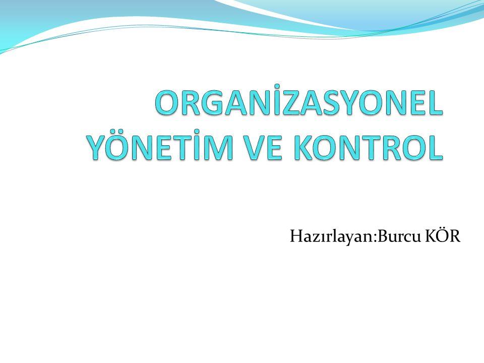 Organizasyonlar: İnsanlar tarafından oluşturulan sosyal kurumlardır.