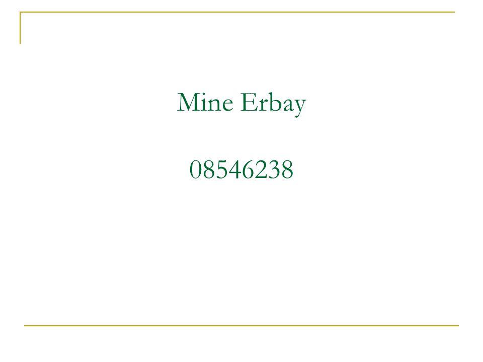 Mine Erbay 08546238