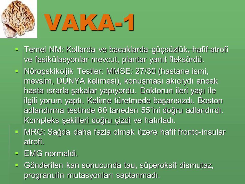 VAKA-1  Temel NM: Kollarda ve bacaklarda güçsüzlük, hafif atrofi ve fasikülasyonlar mevcut, plantar yanıt fleksördü.
