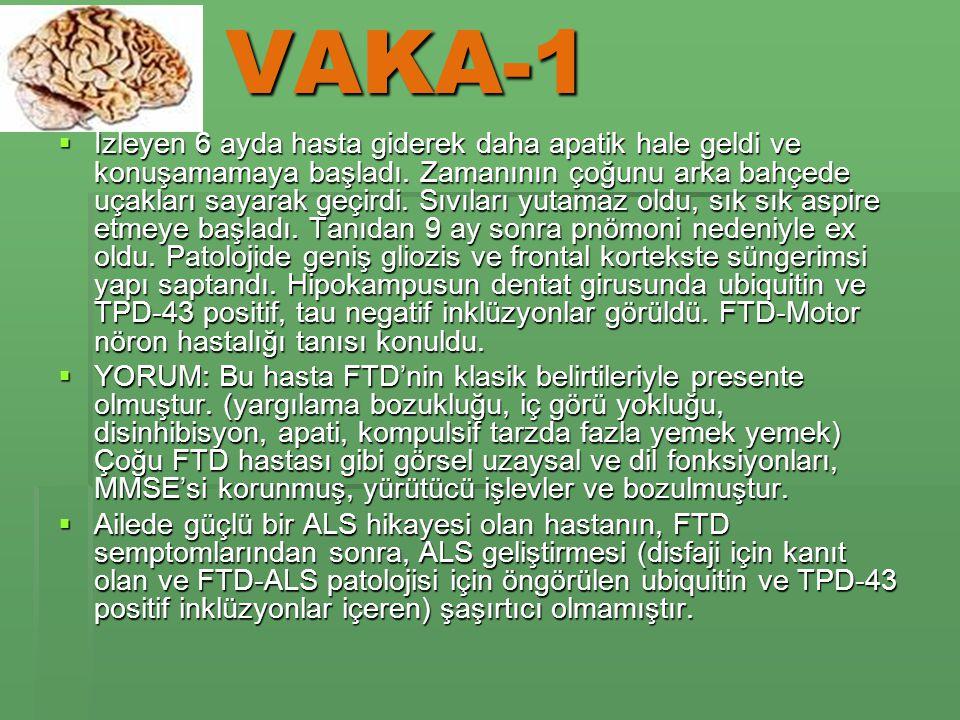 VAKA-1  İzleyen 6 ayda hasta giderek daha apatik hale geldi ve konuşamamaya başladı.