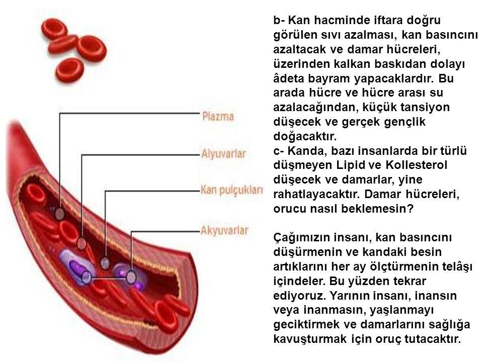 Şimdi çok önemli bir başka dokuya ait hücrelerin birbirleriyle konuşmalarını dinleyelim: Damarın iç yüzündeki hücreler, eğer dile gelseler, birbirleri