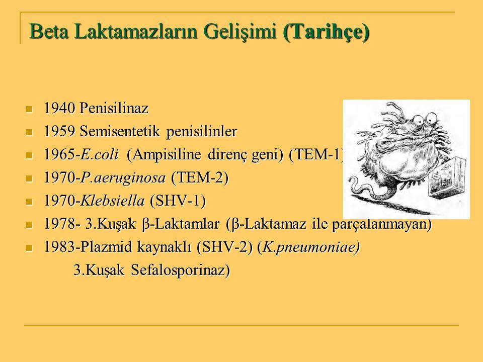 Beta Laktamazların Gelişimi (Tarihçe) 1940 Penisilinaz 1940 Penisilinaz 1959 Semisentetik penisilinler 1959 Semisentetik penisilinler 1965-E.coli (Amp