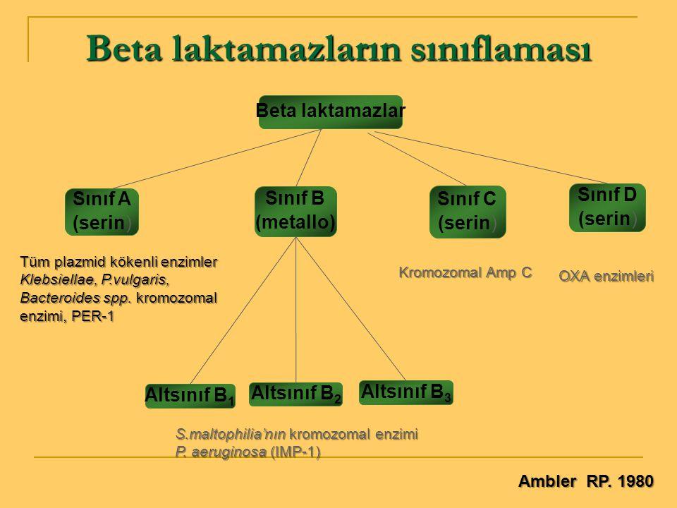 Beta laktamazlar Sınıf C (serin) Sınıf B (metallo) Sınıf D (serin) Altsınıf B 3 Altsınıf B 2 Altsınıf B 1 Beta laktamazların sınıflaması Sınıf A (seri