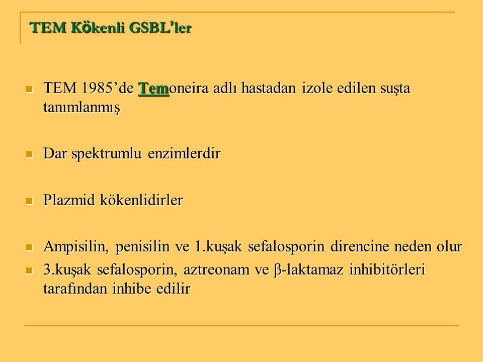 TEM K ö kenli GSBL ' ler TEM 1985'de Temoneira adlı hastadan izole edilen suşta tanımlanmış TEM 1985'de Temoneira adlı hastadan izole edilen suşta tan