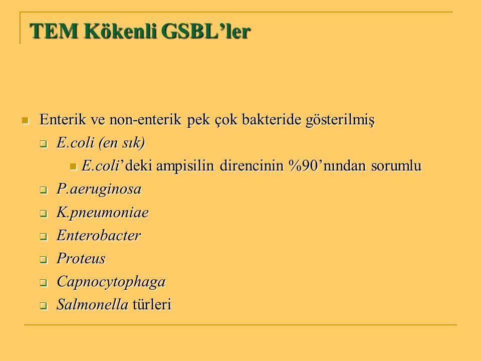 TEM Kökenli GSBL'ler Enterik ve non-enterik pek çok bakteride gösterilmiş Enterik ve non-enterik pek çok bakteride gösterilmiş  E.coli (en sık) E.col