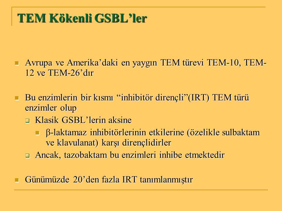 TEM Kökenli GSBL'ler Avrupa ve Amerika'daki en yaygın TEM türevi TEM-10, TEM- 12 ve TEM-26'dır Avrupa ve Amerika'daki en yaygın TEM türevi TEM-10, TEM