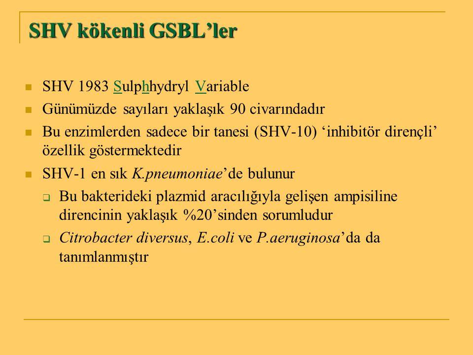 SHV kökenli GSBL'ler SHV 1983 Sulphhydryl Variable Günümüzde sayıları yaklaşık 90 civarındadır Bu enzimlerden sadece bir tanesi (SHV-10) 'inhibitör di