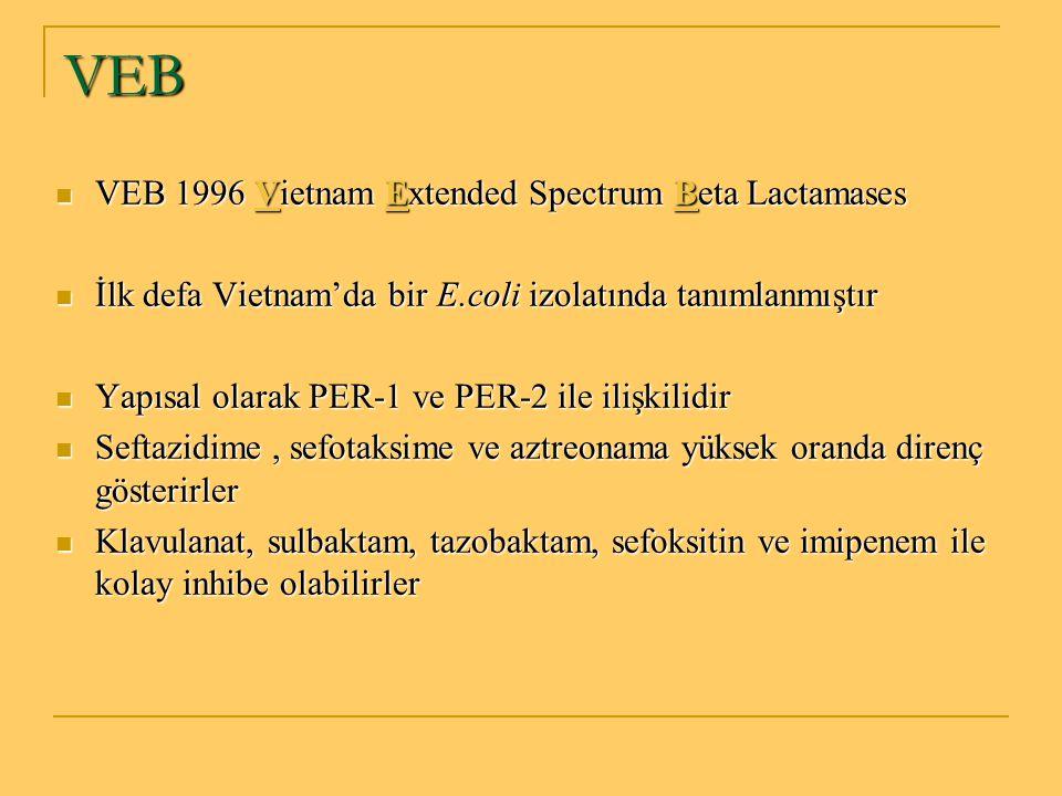 VEB VEB 1996 Vietnam Extended Spectrum Beta Lactamases VEB 1996 Vietnam Extended Spectrum Beta Lactamases İlk defa Vietnam'da bir E.coli izolatında ta
