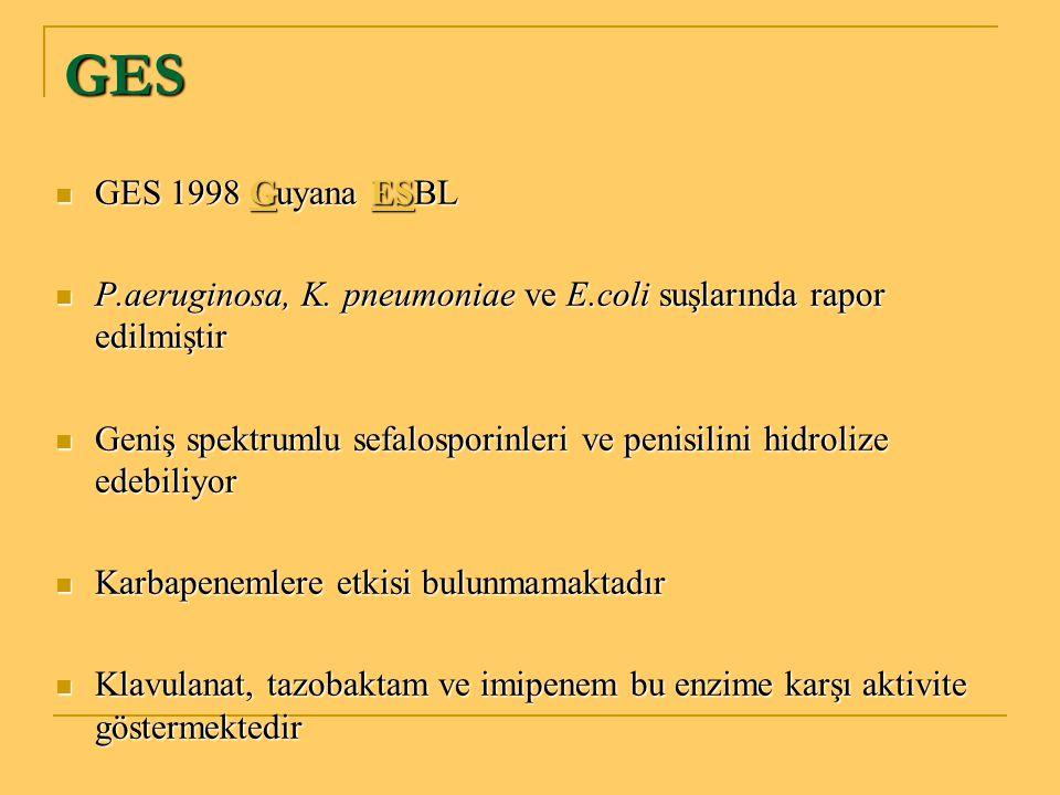 GES GES 1998 Guyana ESBL GES 1998 Guyana ESBL P.aeruginosa, K. pneumoniae ve E.coli suşlarında rapor edilmiştir P.aeruginosa, K. pneumoniae ve E.coli
